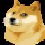 The Doge NFT